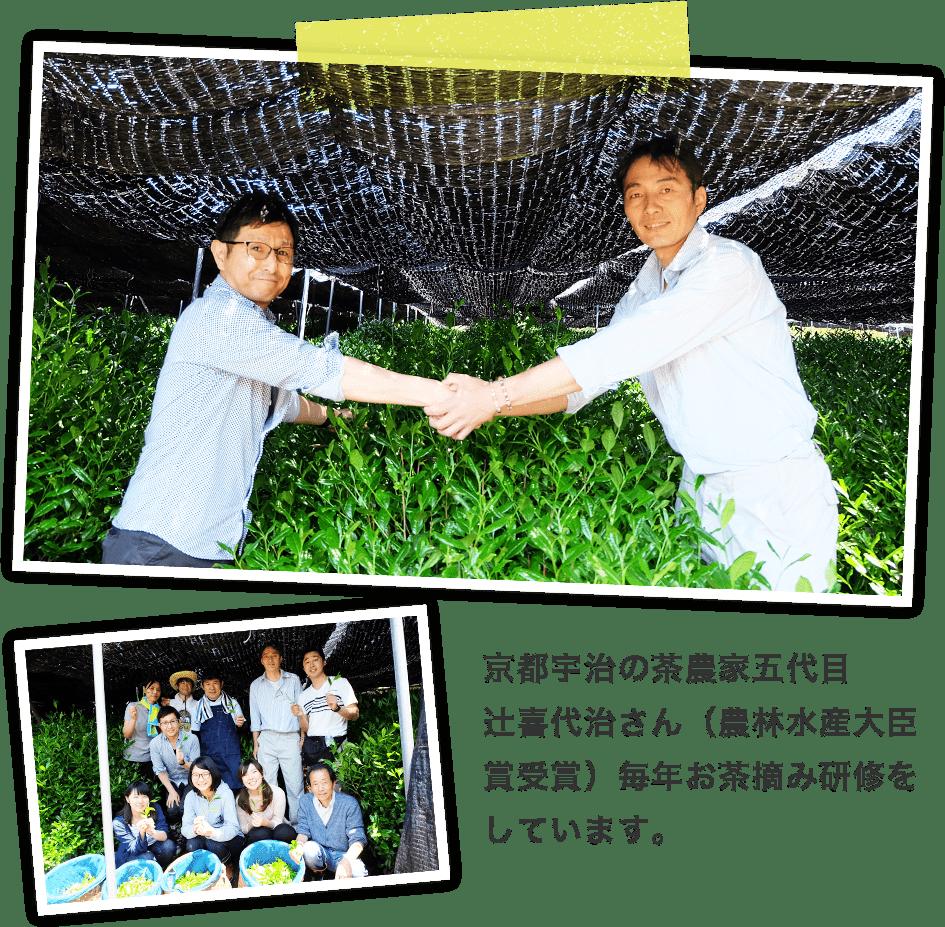 京都宇治の茶農家五代目 辻喜代治さん(農林水産大臣賞受賞)毎年お茶摘み研修をしています。