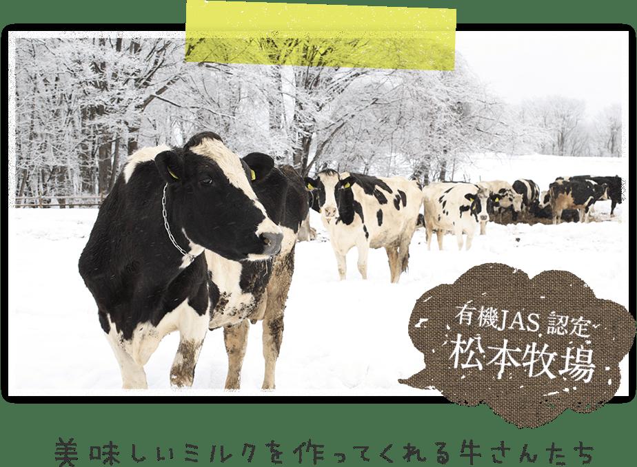 美味しいミルクを作ってくれる牛さんたち