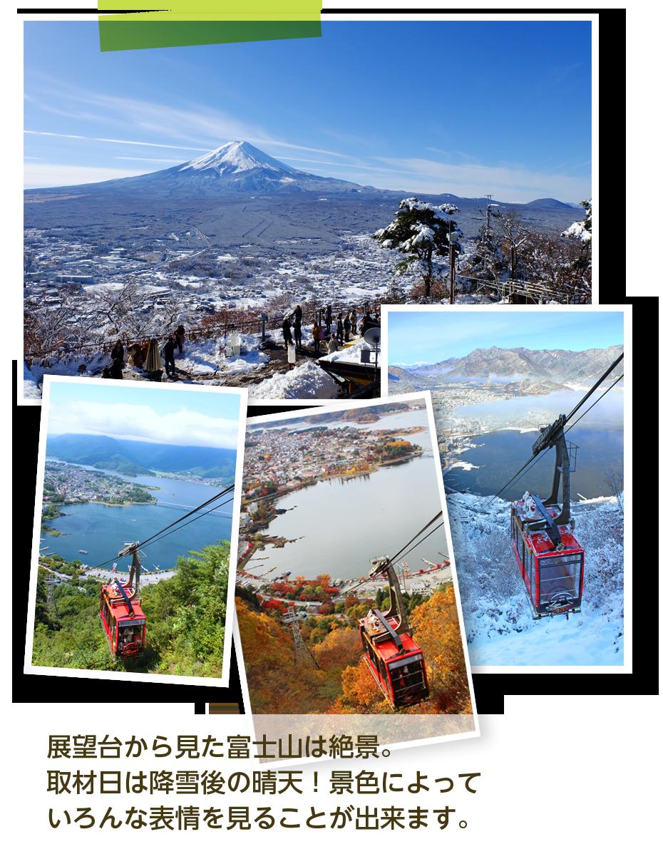 展望台から見た富士山は絶景。
